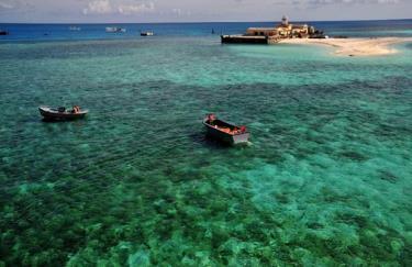 """Tác phẩm """"Rạn san hô đảo Đá Tây - Trường Sa"""" được chụp tại đảo Đá Tây, Trường Sa được trao giải Khuyến khích tại Cuộc thi ảnh về Đa dạng sinh học năm 2013."""