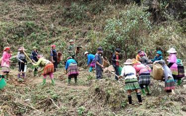 Phân định vùng đồng bào dân tộc thiểu số và miền núi theo trình độ phát triển để phù hợp trong giai đoạn mới.
