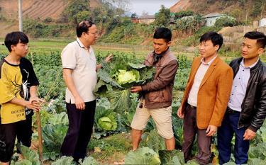 Ông Vũ Tiến Đức - Chủ tịch UBND huyện cùng lãnh đạo Phòng Nông nghiệp và Phát triển nông thôn huyện Mù Cang Chải kiểm tra, đánh giá cao mô hình trồng rau sạch của anh Phạm Quang Thọ.
