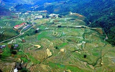 Những thửa ruộng bậc thang ở thung lũng Mường Hoa nhìn từ cabin cáp treo Fansipan.