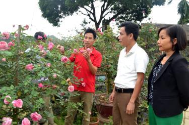 Lãnh đạo xã Tuy Lộc thăm mô hình trồng hoa, cây cảnh của người dân thôn Xuân Lan.