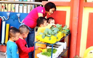 Giáo viên Trường Mầm non Bông Sen hướng dẫn trẻ trồng rau xanh.