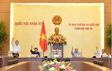 Ủy ban Thường vụ Quốc hội biểu quyết thông qua dự thảo Nghị quyết.
