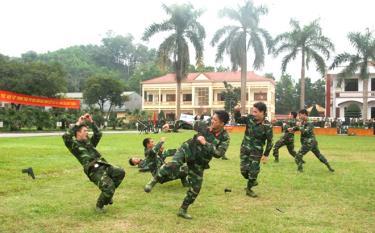 Cán bộ, chiến sĩ lực lượng vũ trang tỉnh biểu diễn võ thuật tại Lễ ra quân huấn luyện hàng năm.