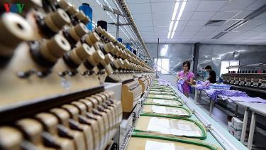 Xuất xứ hàng hóa yêu cầu quan trọng để hưởng ưu đãi thuế quan EVFTA.