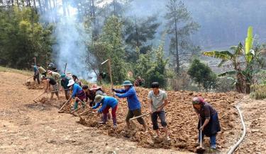 Nhân dân huyện Mù Cang Chải tích cực lao động sản xuất.