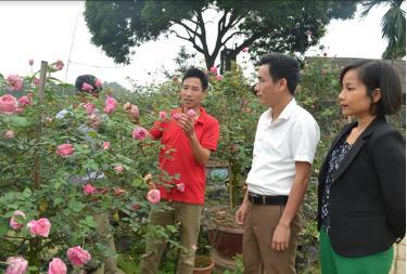 Lãnh đạo xã Tuy Lộc thăm mô hình trồng hoa, cây cảnh ở thôn Xuân Lan.