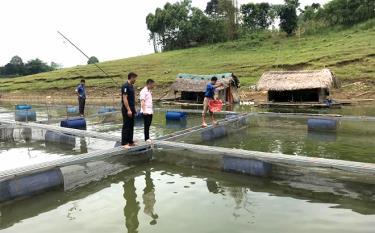 Bè cá lồng của anh Hoàng Văn Gia ở xã Phan Thanh.