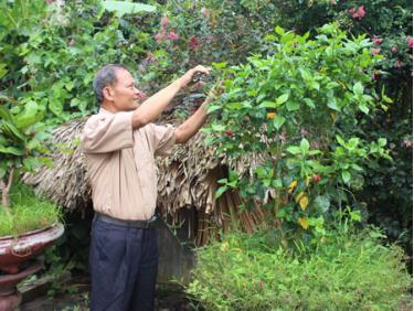 Ông Hà Văn Định chăm sóc cây cảnh trong vườn nhà.