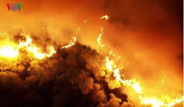 Cháy rừng ở miền Trung diễn ra mới đây.