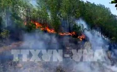 Đám cháy rừng ở huyện Hương Sơn sáng 8/7/2019.