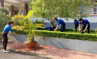 Đoàn viên, thanh niên Sở Tư pháp chăm sóc mô hình vườn cây thanh niên.