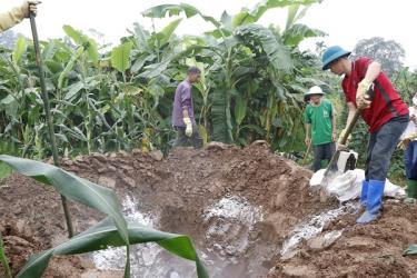 Đến thời điểm này, Yên Bái đã cấp hơn 2.000 lít thuốc sát trùng cùng các vật tư để thực hiện công tác phun tiêu độc khử trùng.