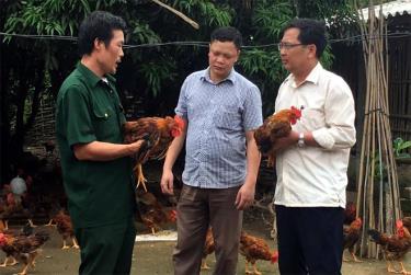 Lãnh đạo Hội Cựu chiến binh huyện Văn Yên thăm mô hình nuôi gà thương phẩm của gia đình hội viên Lê Xuân Kình ở thôn Đại An, xã An Thịnh.