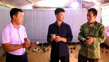Cán bộ kỹ thuật Phòng Nông nghiệp và Phát triển nông thôn huyện Trạm Tấu thường xuyên xuống hỗ trợ nông dân kỹ thuật nuôi gà đen.