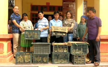 Đồng chí Đinh Bá Thanh - Phó Bí thư Đảng ủy, Chủ tịch Công đoàn cơ sở Kho bạc Nhà nước Yên Bái cùng đoàn công tác trao tặng ngan giống cho các hộ dân