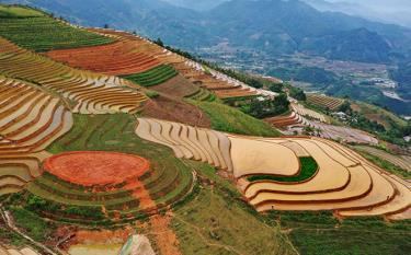 Phong Du Thuong Terrace Field – a destination that align economic development with tourism