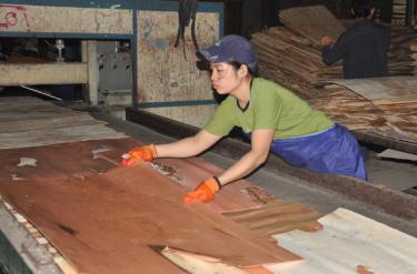 Những năm qua, tỉnh Yên Bái luôn coi trọng thu hút đầu tư chế biến sâu nguyên liệu gỗ rừng trồng. Ảnh: Thành Trung.