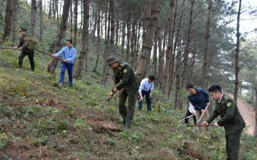 Cán bộ kiểm lâm huyện Trạm Tấu, Ban Quản lý Rừng phòng hộ huyện và xã Bản Công làm đường băng cản lửa phòng cháy chữa cháy rừng.