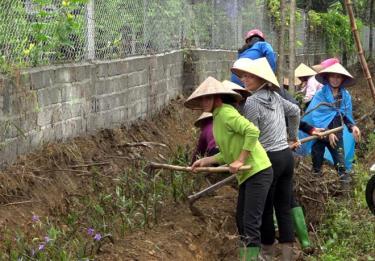 Nhân dân xã Thượng Bằng La trồng hoa tạo cảnh quan bên đường vào trung tâm xã.