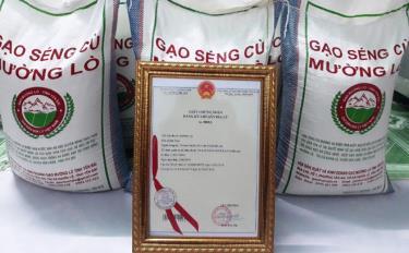Gạo Mường Lò là 1 trong 3 sản phẩm đủ điều kiện về sản lượng, chất lượng, quy mô để đăng ký xây dựng  sản phẩm OCOP