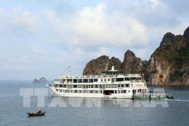 Tàu du lịch trên vịnh Hạ Long.