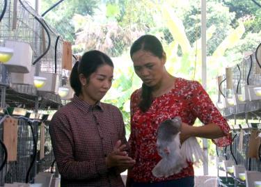 Chị Lê Thị Ngọc (bên trái) giới thiệu về cách nuôi chim bồ câu Pháp với Chủ tịch Hội Phụ nữ xã Vũ Linh.