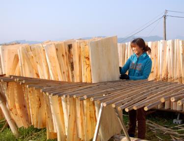 Học Bác, người dân Đông An tập trung phát triển kinh tế trên những tiềm năng về nông lâm nghiệp.