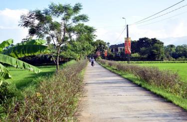 Xã Việt Thành đang nỗ lực thực hiện tiêu chí môi trường để hoàn thành xây dựng xã nông thôn mới kiểu mẫu.