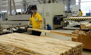 Giấy phép chứng minh sự hợp pháp của sản phẩm gỗ mở ra cơ hội lớn cho xuất khẩu sản phẩm gỗ của Việt Nam sang EU.
