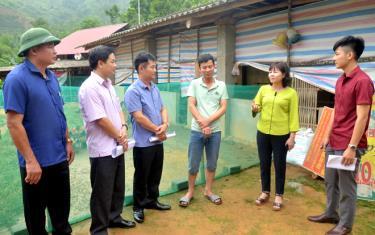 Đồng chí Hoàng Thị Thanh Bình – Phó Chủ tịch HĐND tỉnh cùng lãnh đạo các ban của HĐND tỉnh giám sát việc triển khai thực hiện chính sách hỗ trợ phát triển sản xuất nông, lâm nghiệp tại xã Nghĩa Tâm, huyện Văn Chấn