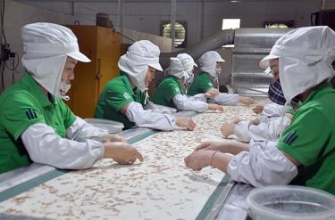 Công nhân lao động Công ty cổ phần Yên Thành (Yên Bình) luôn hưởng ứng các phong trào thi đua do tổ chức công đoàn Công ty phát động, góp phần để có được việc làm và thu nhập ổn định.