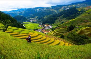 through communications and promotion activities, the beauty of Mu Cang Chai will become closer to domestic and foreign friends.