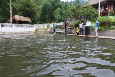 Diện tích nuôi trồng thủy sản toàn huyện Lục Yên duy trì ổn định từ năm 2016 đến nay đạt trên 432 ha.