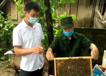 Cựu chiến binh Nguyễn Văn Toàn giới thiệu mô hình nuôi ong mật.