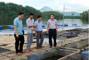 Lãnh đạo các phòng chuyên môn huyện Yên Bình kiểm tra việc nuôi cá lồng trên hồ Thác Bà thuộc Đề án tái cơ cấu ngành nông nghiệp.