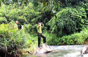 Anh Đinh Trung Hà cùng đồng đội thực hiện nhiệm vụ tuần tra, canh gác, bảo vệ rừng.