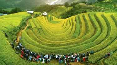 Danh thắng quốc gia Ruộng bậc thang Mù Cang Chải luôn là điểm đến hấp dẫn du khách trong và ngoài nước.