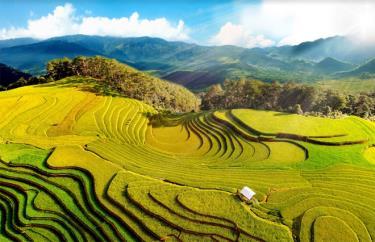Di tích quốc gia đặc biệt Danh lam thắng cảnh Ruộng bậc thang Mù Cang Chải.