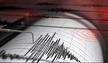 Biểu đồ mô phỏng động đất.