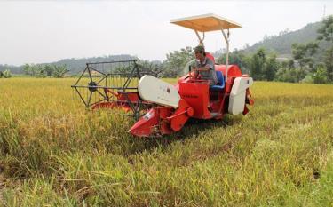 Nông dân Yên Bái cơ giới hóa trong sản xuất.