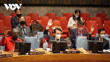 Đại sứ Phạm Hải Anh biểu quyết thông qua nghị quyết về Afghanistan và Iraq.