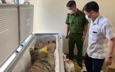 Cá thể hổ được phát hiện trong tủ lạnh.