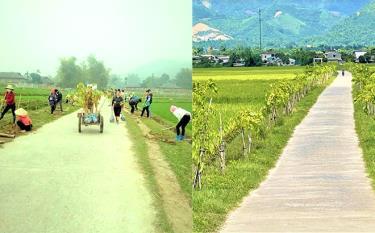 Năm 2019, nhân dân thôn An Sơn trồng gần 1 km đường hoa ban nối từ thôn Bản Đường vào đến cổng làng và hiện nay đường ban đã phát triển xanh tốt.