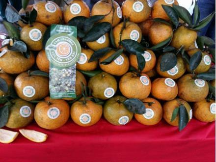 Luc Yen oranges are sold at Vietnam Local Specialties Fair